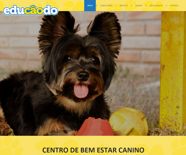 Website Educãodo